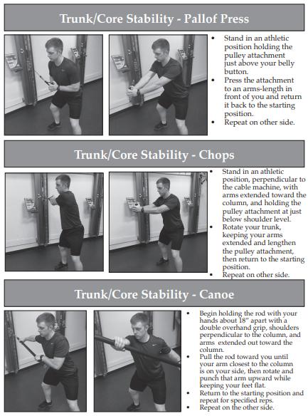 3 Core Exercises